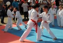 karate kids - Olympicfest Chisinau by Natalia Donets