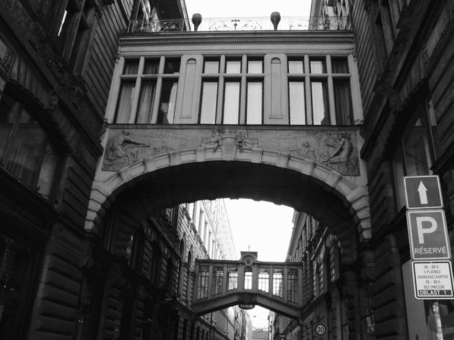 Bridges. Natalia Donets